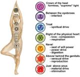 How Are Your Chakras?
